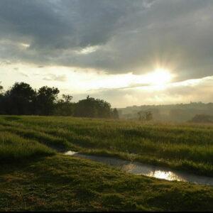paysage du Condroz sous la brume