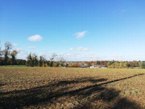 Les prairies de Buresse entre Hamois et Havelange